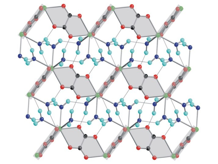 シュウ 酸 カルシウム 結晶